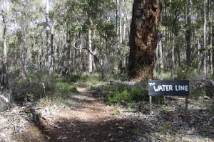 The Waterline - Mountain Biking Trail - Donnybrook Western Australia